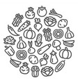 vegetables icons in a circular shape vector image