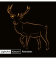 Reindeer silhouette of lights on black background vector image