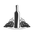 bunch grapes and bottle wine vector image