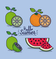 colorful poster of hello summer with citrus fruits vector image