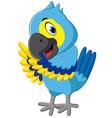 cute macaw cartoon vector image vector image