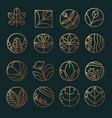 floral logo design templat vector image