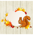 Fluffy squirrel and maple leaves vector image vector image