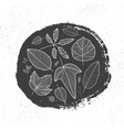 hand drawn ink circle and linear autumn vector image vector image
