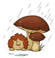 hedgehog in the rain vector image vector image