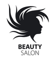 logo girl with flying hair for beauty salon vector image vector image