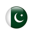 pakistan flag on button vector image vector image