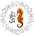 sea horse with marine elements and vector image