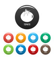 tomato icons set color vector image vector image