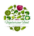 vegetarian food poster with green vegetables vector image vector image