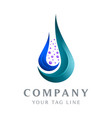 abstract water drop logo template falls for vector image