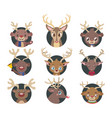 collection of various reindeer portrait avatars vector image vector image