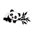 flat with panda vector image vector image
