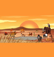 scene with many animals in field vector image vector image