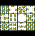 seamless floral patterns with leaves vector image