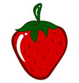 tasty strawberry on white background vector image vector image