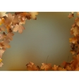 Autumn leaves background template EPS 10 vector image