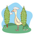 bird outdoors cartoon vector image