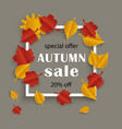 fall sale promotion banner with autumn leaves vector image vector image