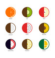 fruit icon set flat design isolated on white vector image