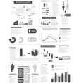 INFOGRAPHIC DEMOGRAPHICS NEW STYLE GREY vector image vector image
