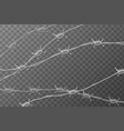 several lines glossy realistic barbed wire on vector image vector image