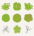 trees in top view set green and burnt trees vector image