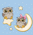 valentine card with lovers owls on a moon and star vector image vector image