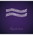 Diamond zodiac Aquarius vector image
