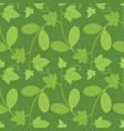 ecballium decorative floral seamless pattern vector image vector image