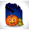 Halloween background with pumpkin and bats vector image vector image