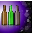 Three bottles of beer Refreshment vector image vector image