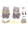 cat or kitten with flowers designer collection vector image