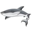 Generic shark vector image vector image