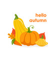 hello autumn banner template seasonal poster vector image vector image