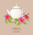 hibiscus tea in teapot vector image vector image