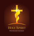 holy spirit card vector image