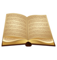 Open ancient Book vector image
