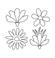beautiful flowers set decorative icon vector image