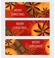Christmas banner with orange and spices flyer vector image vector image