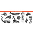 engraved style sea life animals collection vector image