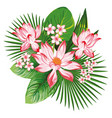 floral composition pink lotus green leaves vector image
