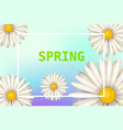 hello spring daisies flowers background cartoon vector image vector image