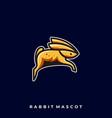 rabbit jump design template vector image
