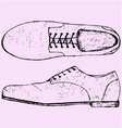 shoes shoelace vector image