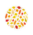bright autumn leaves various forest trees vector image
