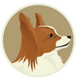 dog collection papillon avatar icon round vector image vector image