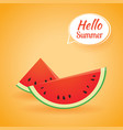 hello summer card banner with watermelon paper vector image vector image