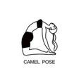 yoga camel pose composition vector image