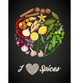 Circle of spices vector image